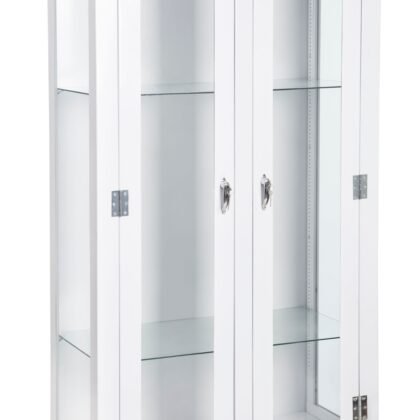 Instrument Cabinet Double Doors